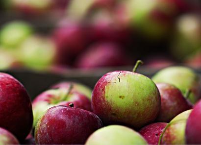 jabłka_polskie_sadownictwo