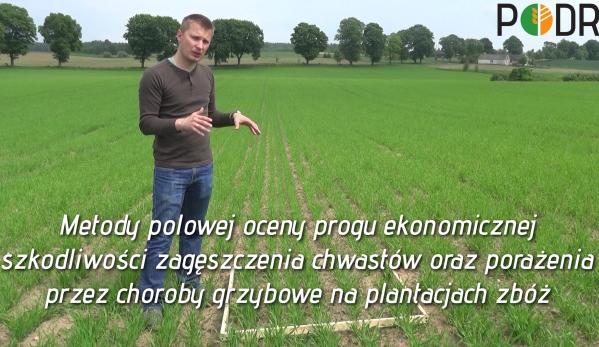 Film_ocena_upraw_zboz_blog