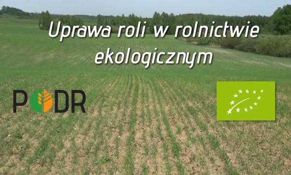 uprawa_roli_w_ekologii