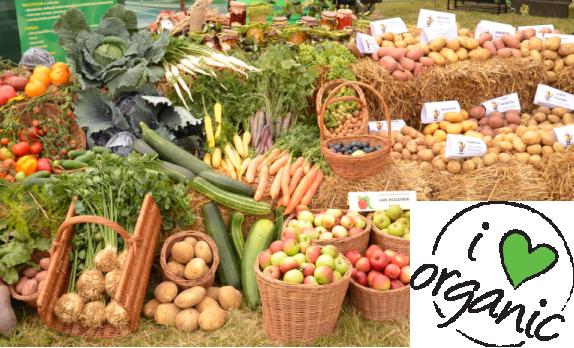 Rolnictwo_ekologiczna_charakterystyka _klientów